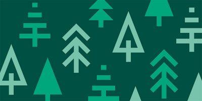 w-drzewach-obroza-dla-psa-smycz-szelki-hauever