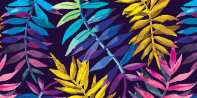 obroza-dla-psa-smycz-szelki-hauever-babie-lato-indian-summer-liscie-leaves-color-swamp