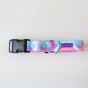 SALE / Obroża z klamrą Hologram M 25mm / okucia lazurowe